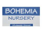 Bohemia Nursery logo