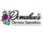 Donahues Logo