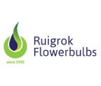 Ruigrok Logo